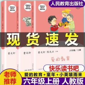 快乐读书吧 六年级上册人教版 爱的教育/小英雄雨来/童年 曹文轩