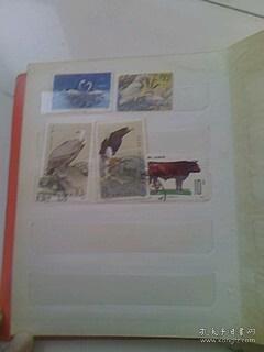T63畜牧业(6-5)10分 草原红牛,带左边原胶全新邮票一枚