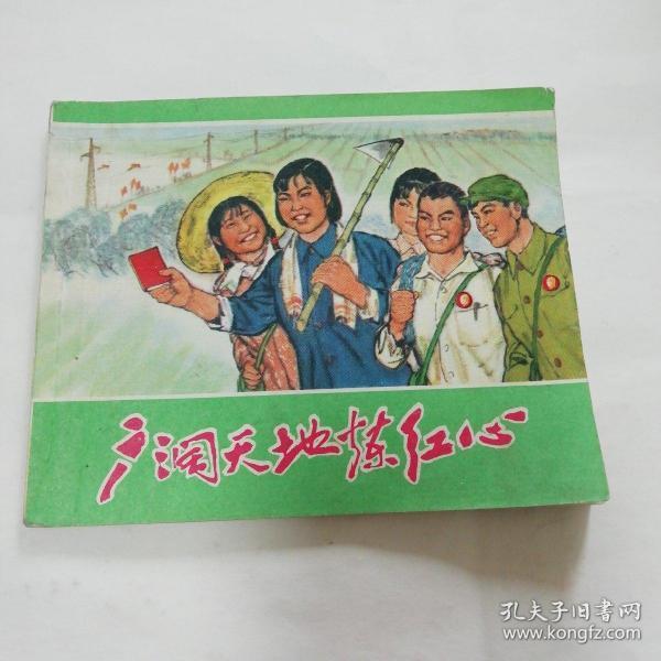 71年文革经典连环画《广阔天地炼红心》1版1印