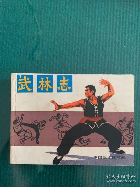 中国武术连环画:武林志