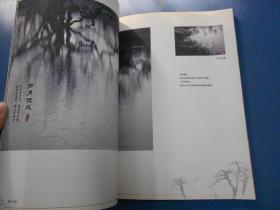 水墨鹤之洲--增城鹤之洲湿地掠影-大16开