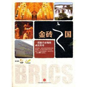 正版图书 金砖之国:一部新兴市场的成长传奇 5DVD