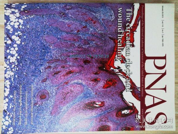 PNAS 2013/01/29 美国国家科学院院刊学术论文原版期刊外文杂志  Proceedings of the National Academy of Sciences of the United States of America