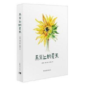 正版现货 马背上的夏天:四个女孩三个夏天的支教纪实 汤珣 等 中国青年出版社 9787515321288 书籍 畅销书