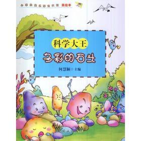 小学生快乐学习大王.多彩的石头