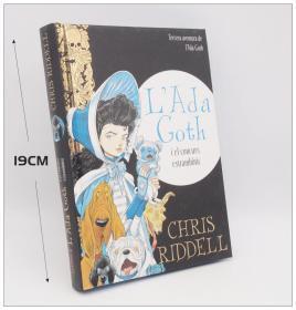 Lili Goth, Tome 3 : Les Hauts de Hurlefrousse 插图法语版小说 法文插画