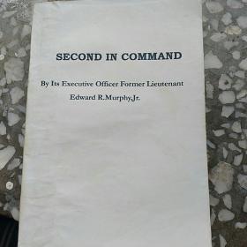 副指挥官《原英文版》