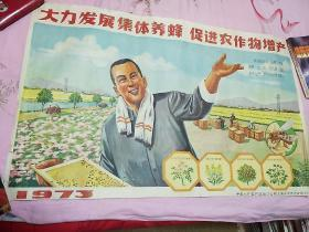 2开文革宣传画:大力发展集体养蜂,促进农作物增产(76×47cm)