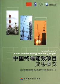 中国终端能效项目成果概览