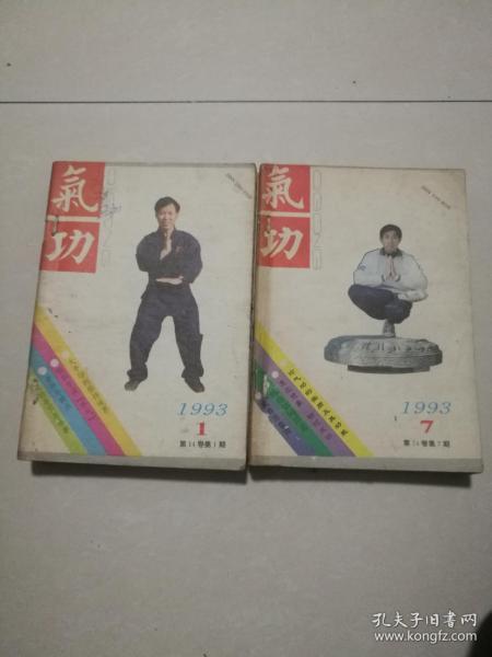 气功1993年合订本1一12期合售