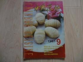 中国烹饪1997年 第9期