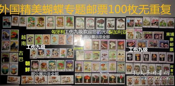 100枚外国蝴蝶专题邮票,票面精美,无重复!请注意图片及说明