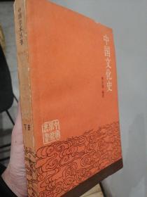中国文化史.下册