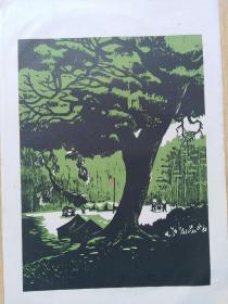 五六十年代朵云轩木板水印版画《夏令营》