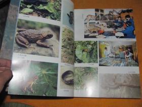 甘肃白水江国家级自然保护区综合科学考察报告(封面书角略有破损)