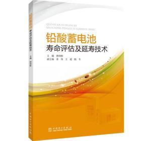 铅酸蓄电池寿命评估及延寿技术