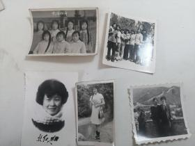 照片5张合售