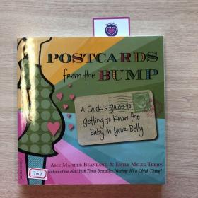 Postcards from the Bump: A Chicks Guide to Getting to Know Your Baby in Your Belly