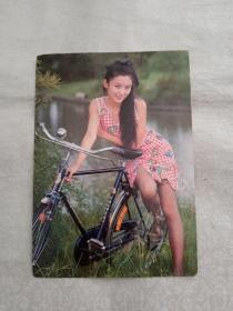 陶红和自行车