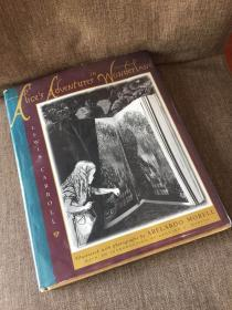 Alice's Adventures in Wonderland(刘易斯·卡罗尔《爱丽丝漫游仙境》,Abelardo Morell插图,精装大开本,好纸印刷,1998年美国初版)
