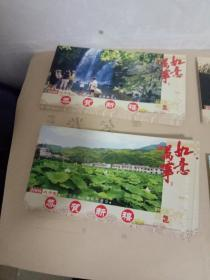 邮资片 2008年白河风光四张一套全