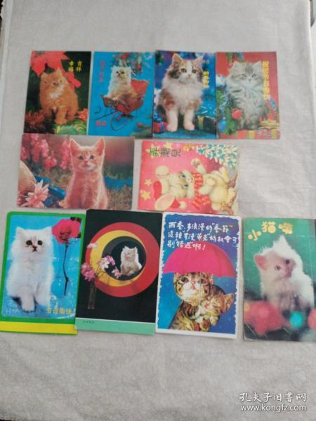 贺卡9张猫图案、1张兔子图案