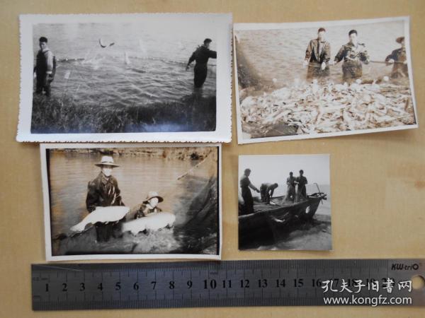 资料室散出,老照片【80年代,农场渔业,4张】