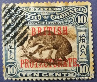 英联邦邮票C,英属北婆罗洲古典时期,野生动物,太阳熊
