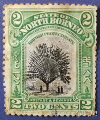 英联邦邮票C,英属北婆罗洲古典时期,野生植物,棕榈树