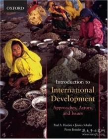 Introduction To International Development: Approaches Actors And Issues
