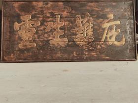 庇护生灵,老牌匾,大清咸丰八年 精品榉木  赠送给庙上的老牌匾  庇护生灵  大漆描金字  全品完整牢固包老  包老无修复尺寸190/90