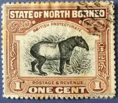 英联邦邮票C,英属北婆罗洲古典时期,野生动物,马来貘