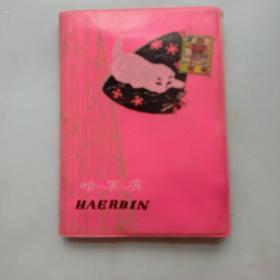 老日记本 烹饪日记 (内内三幅彩画和生活日记) 70年代日记本