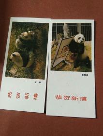 年卡  1988年熊猫2张