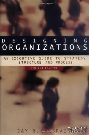 Designing Organizations: An Executive Guide To Strategy Structure And Process Revised