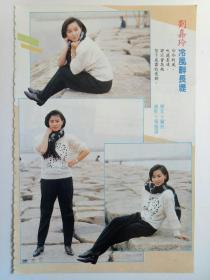 刘嘉玲彩页
