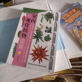 正版室内观赏植物图鉴2
