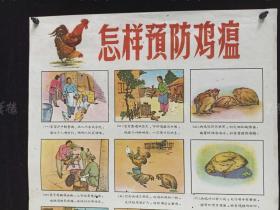 1962年 山西省畜牧厅编印《怎样预防鸡瘟》宣传画一张 HXTX312346