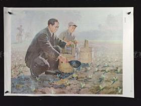上海教育出版社出版 蔡亮画《杨家岭的早晨》宣传画一张 HXTX312358