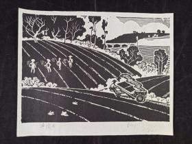 著名版画家、中国美协理事 莫测 木刻版画作品《丘陵曲》一幅 (有出版过,尺寸:22*27.5cm)HXTX313290