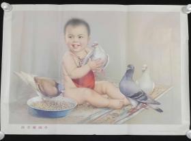 1982年 上海人民美术出版社出版 新华书店上海发行所发行 金梅生作《孩子爱鸽子》宣传画一张 HXTX312984