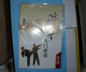 国术丛书  咏春拳  入门必读  挂图  带光盘