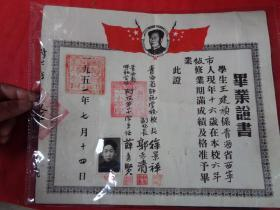 少见带毛头老证书《毕业证书》1951年,青海省师范学校,附带像片一张,品好如图。