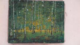 约 80年代落款为 SH  白桦林  油画一幅  画心尺寸50*65厘米