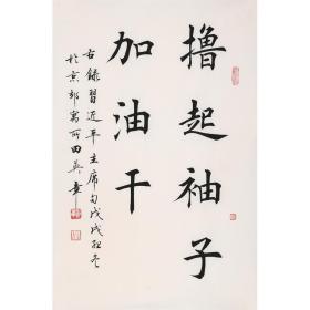 田英章 楷书书法 撸起袖子加油干