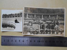民国老照片【南京中山陵音乐台,2张】有一张摆满菊花,可能在举办菊展