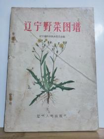 P12582  辽宁野菜图谱·彩图版