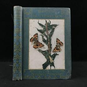 1916年 英国蝴蝶图鉴 16幅插图 漆布精装32开 封面贴画