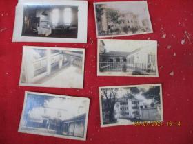 老相片,6张合拍,品好如图。