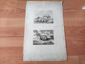 18世纪铜版蚀刻《大师雕刻作品两幅:牧场与家畜》(Pigs and Sheep)-- 版画纸张42*27厘米